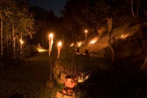 Feuergarten 4